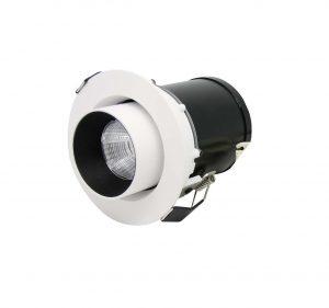 DD recessed adjustable downlight
