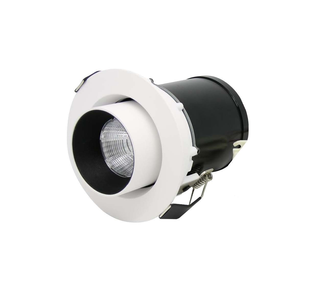 DD recessed adjustable downlight