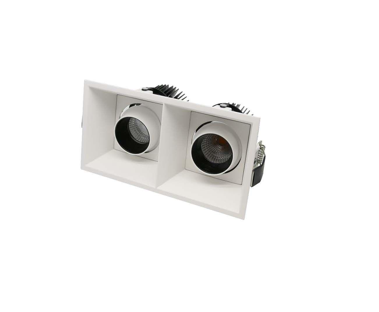 twin adjustable recessed downlight