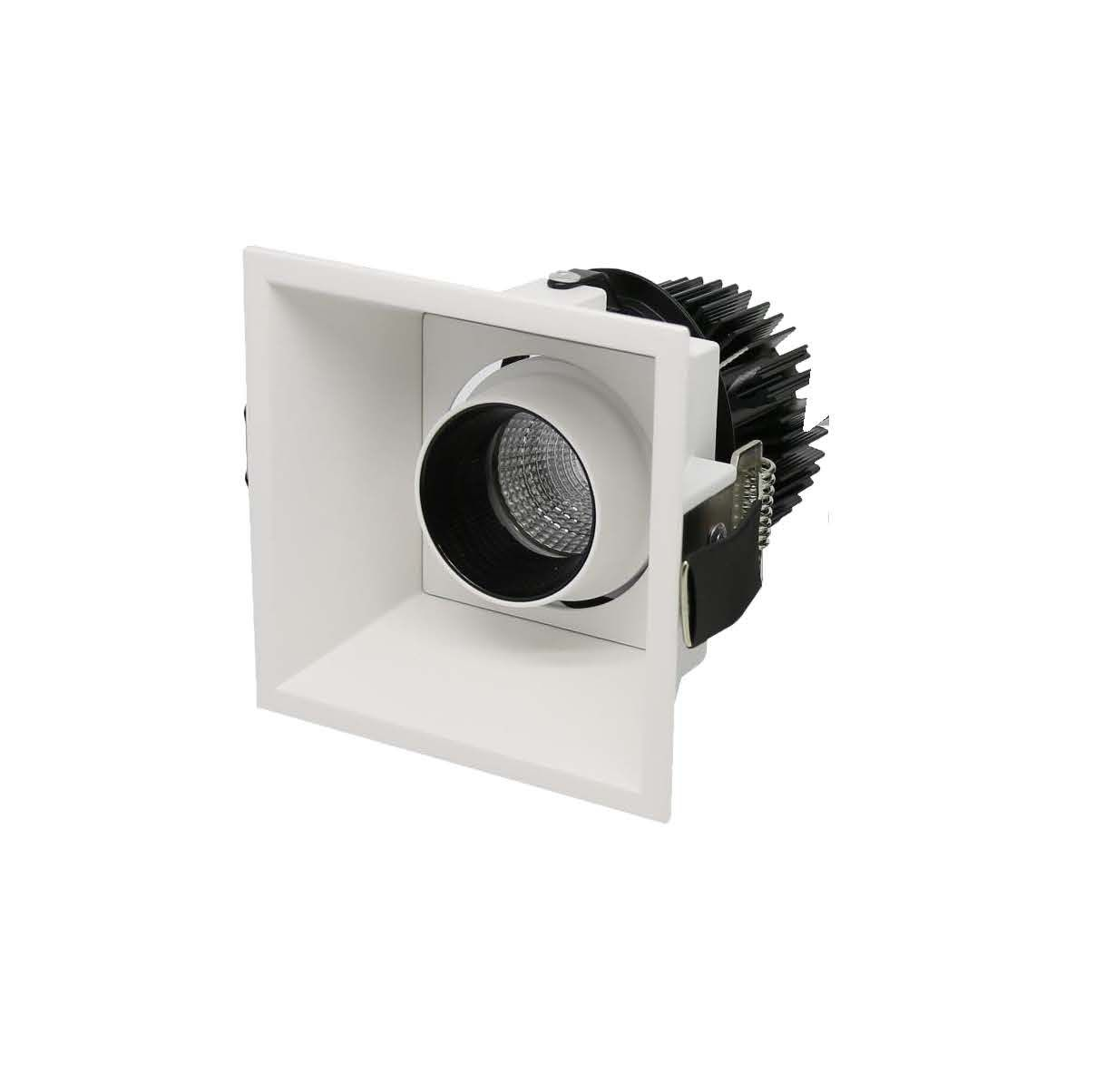 MIA recessed adjustable downlight